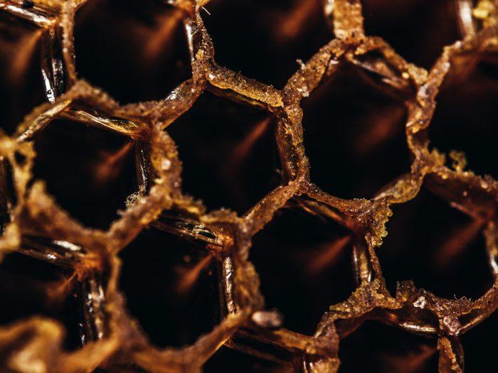 La différence entre le miel et la propolis